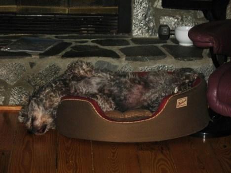 Henry zonked