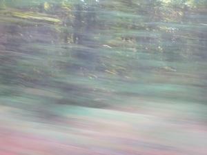 20121005-203944.jpg