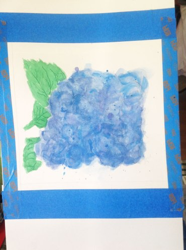 Hydrangea-in-progress