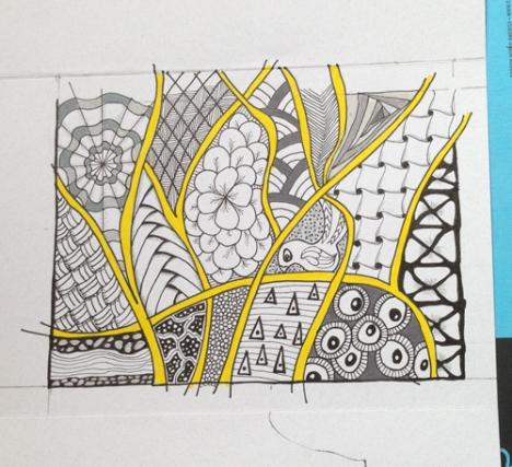 step 5 color